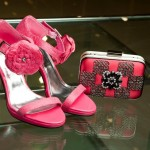 Fashion Clutches And Shoes Accessories By Women
