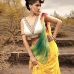 Vikas Rattu Party Wear Saree Collection