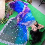 Avalon Jasmine Michael Grand Blue Saree