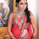 Indian Jasmine Crystal Bridal Wear Dress