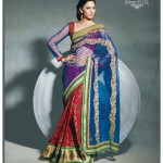 Classic Saree For Young Girls New Collection 2014
