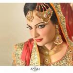 Branded Makeup Bridal Lookbook By Anam  Salon