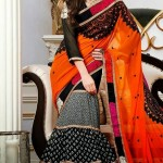 Bollywood Pallu  With Blouse Saree Collection